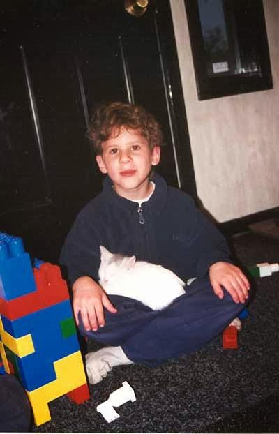 kitten curled in a boy's lap