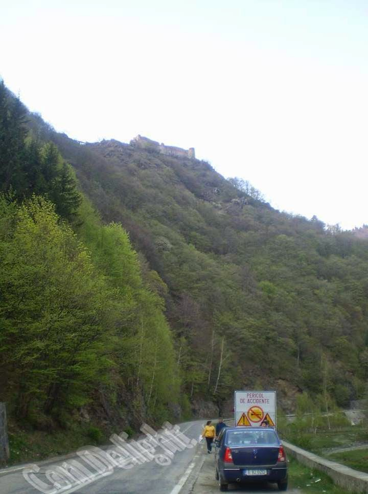 view on poenari castle