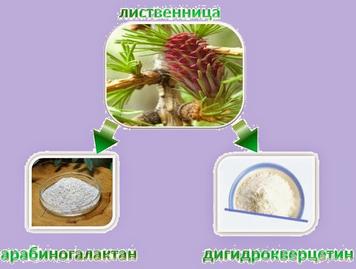 Дигидрокверцетин и арабиногалактан