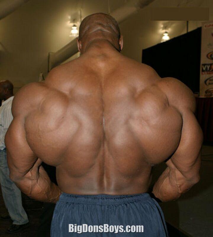 Knights of Bodybuilding: JOEL STUBBS 2