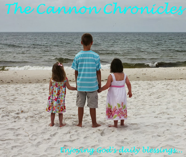 The Cannon Chronicles