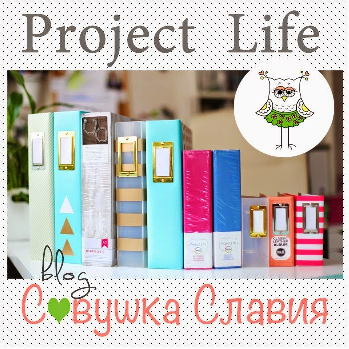 PROJECT LIFE CHALLENGE 2015
