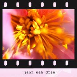http://sabinegimm.blogspot.de/p/ganz-nah-dran.html
