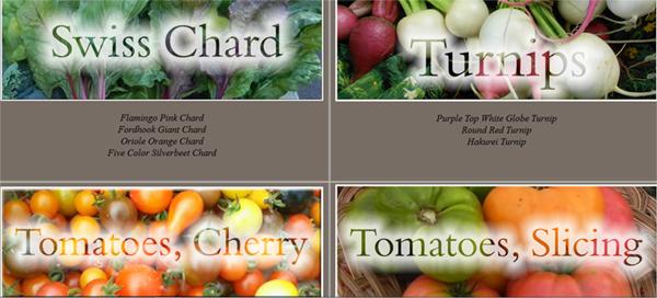 http://myplace.frontier.com/~realveggiesfarm/VegetablesFruits.htm