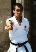 Fujinaga Yasuyuki Sensei (1944-1995)
