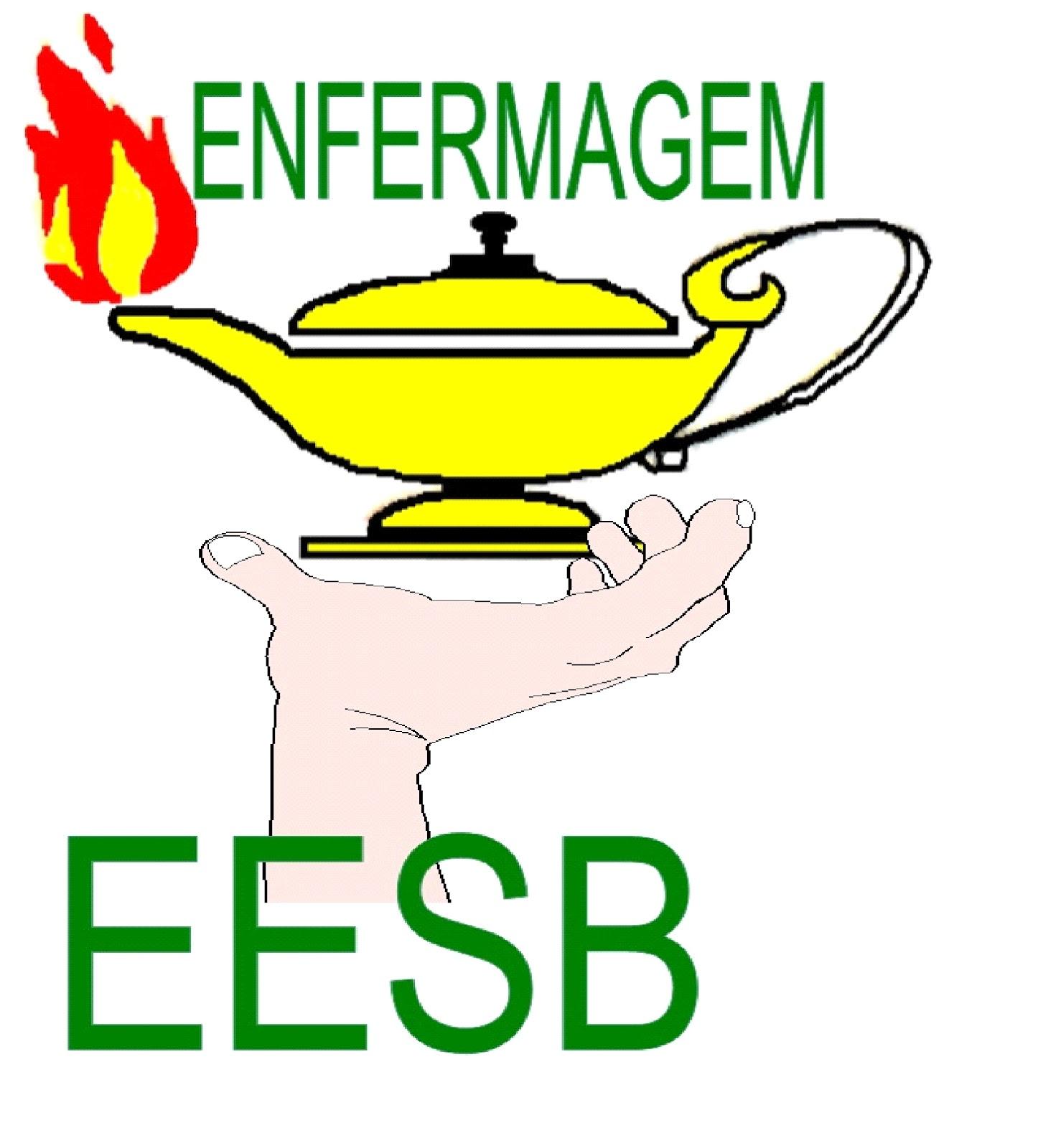Resultado de imagem para ESCOLA DE ENFERMAGEM SANTA BARBARA GOIANA