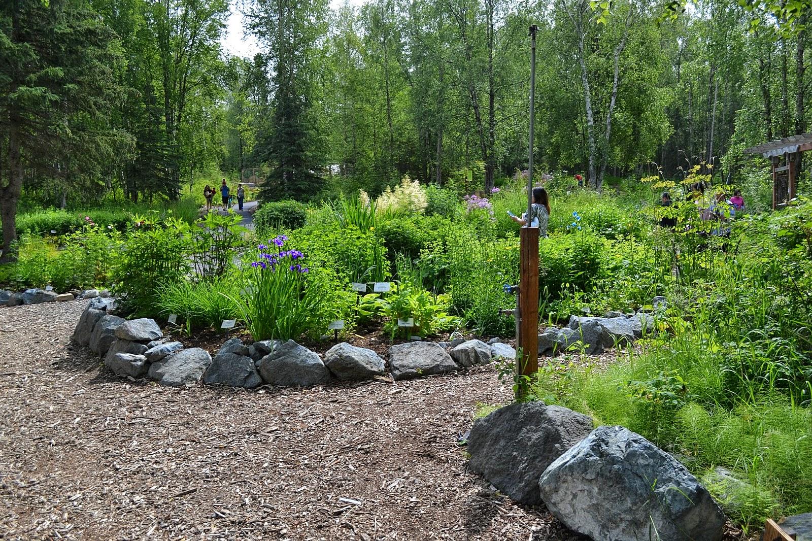 the outlaw gardener the alaska botanical garden part three - Alaska Botanical Garden
