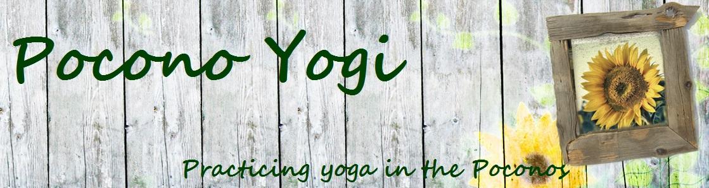 Pocono Yogi