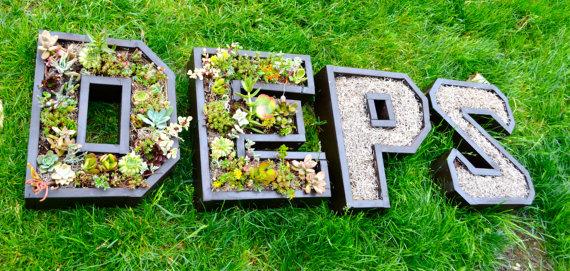 letras jardin vertical