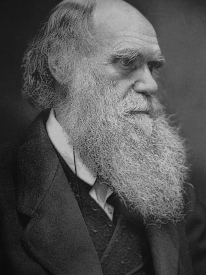 Charles darwin and the theory of evolution essay