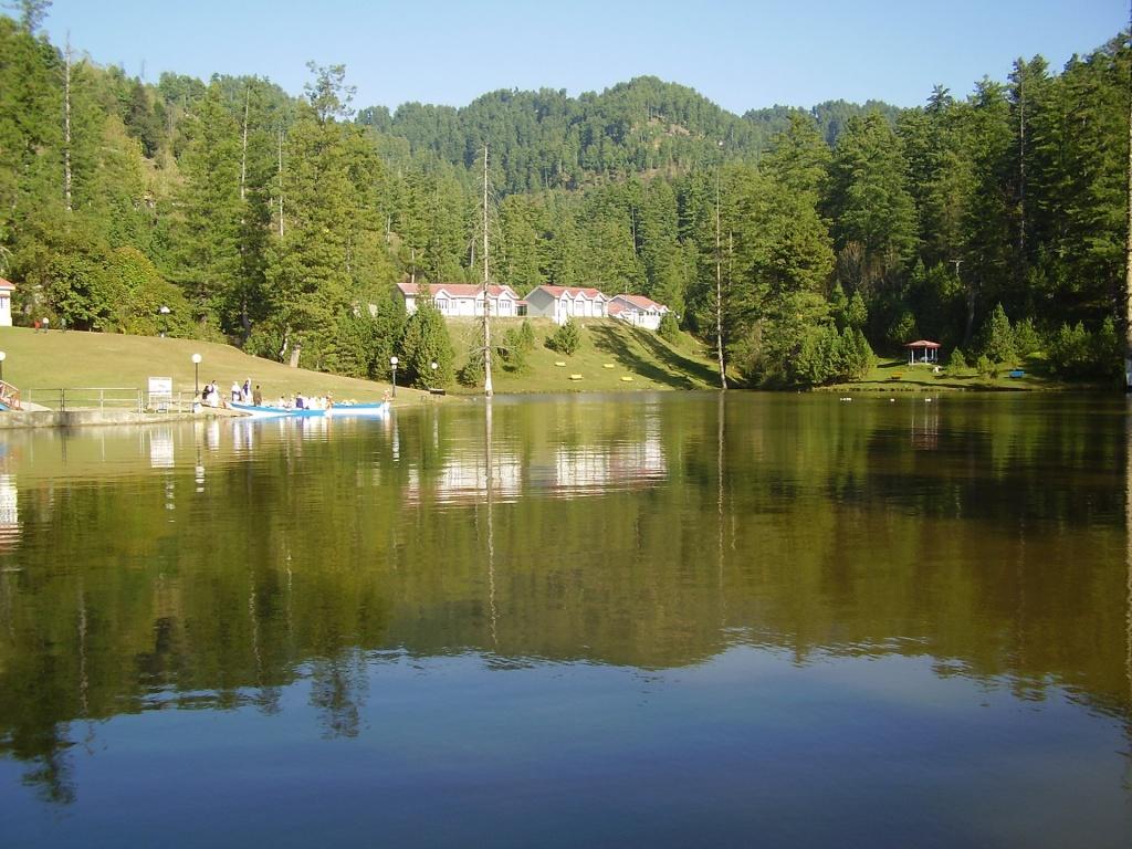 Beautiful nature sceneries pics: Rawalakot sceneries pics