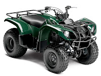 2013 Grizzly 125 Automatic Yamaha pictures 2