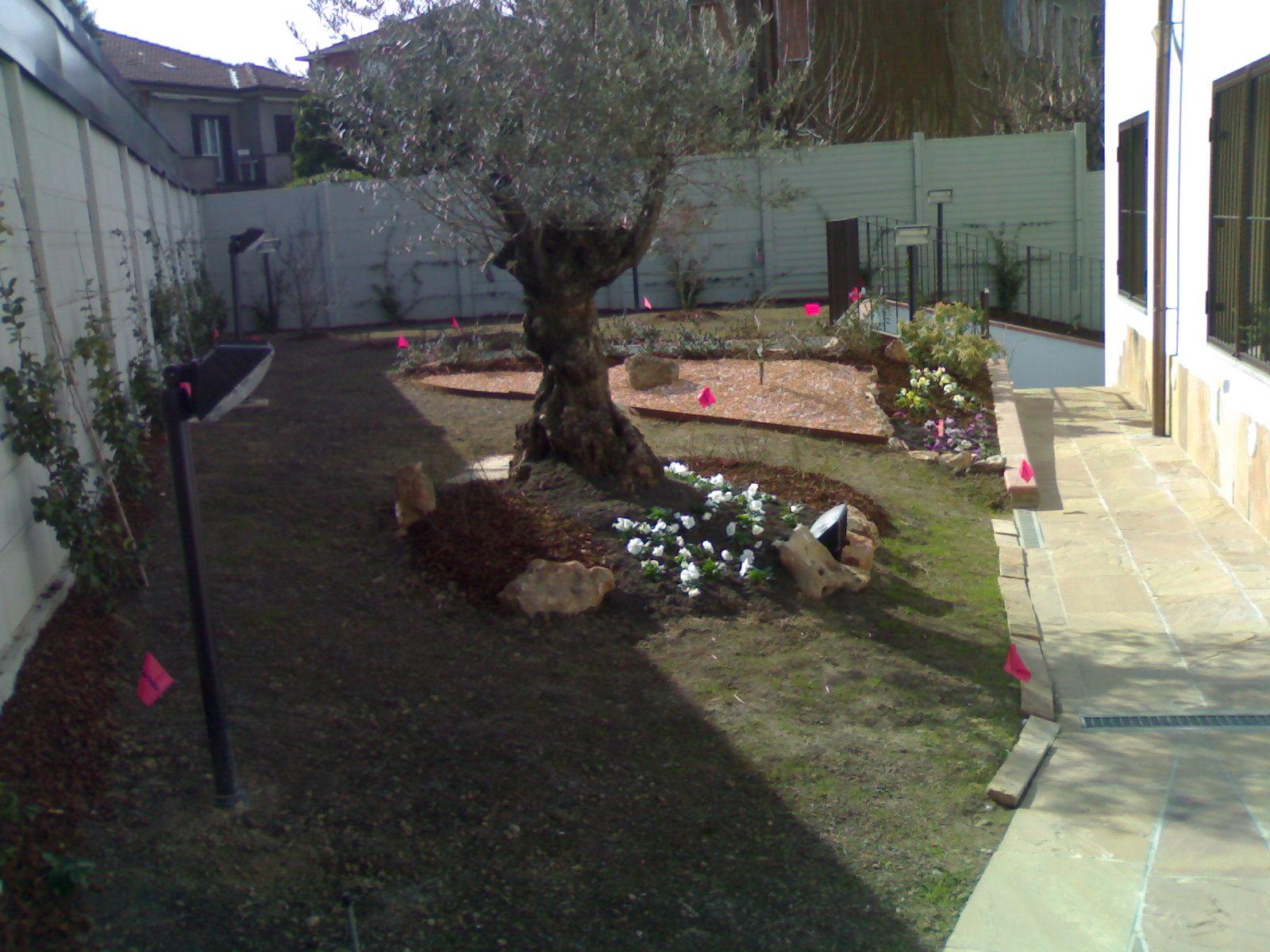 Creare giardini autunno e la semina del prato - Concime per prato verde ...