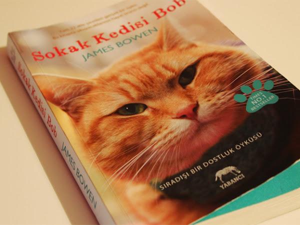 Kitap Önerisi | Sokak Kedisi Bob