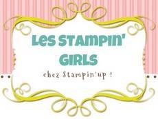 http://lesstampingirls.blogspot.com/2016/01/blog-hop-de-janvier-sab.html