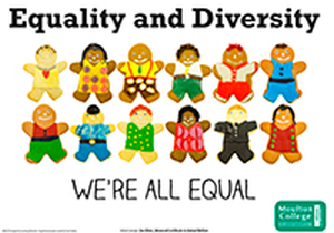 a discussion of equality and diversity