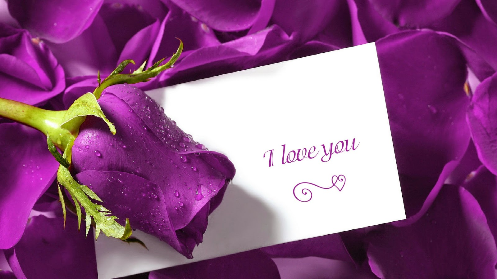 I Love You With Flowers, part 2