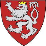 Organizatorzy Orszaku Trzech Króli w Kłodzku - 2015