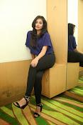 Bhanu sri mehra sizzling photos-thumbnail-18