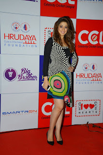 Laxmi Rain in Short Black Dress Spicy Beauty at CCL Charity Dinner