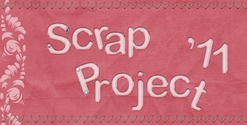 Scrap Project 2011