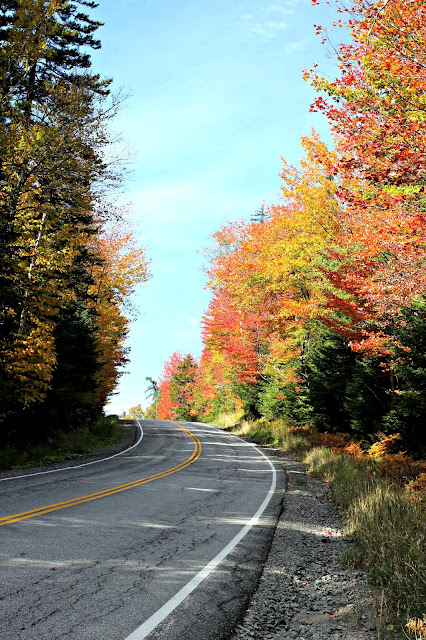 Fall foliage in Adirondack Mountains - www.goldenboysandme.com