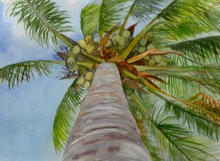 Palm Gazing