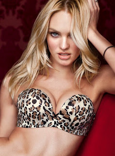 Bra Guide by Victoria's Secret