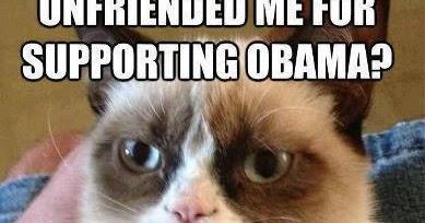 political memes grumpy cat get s political