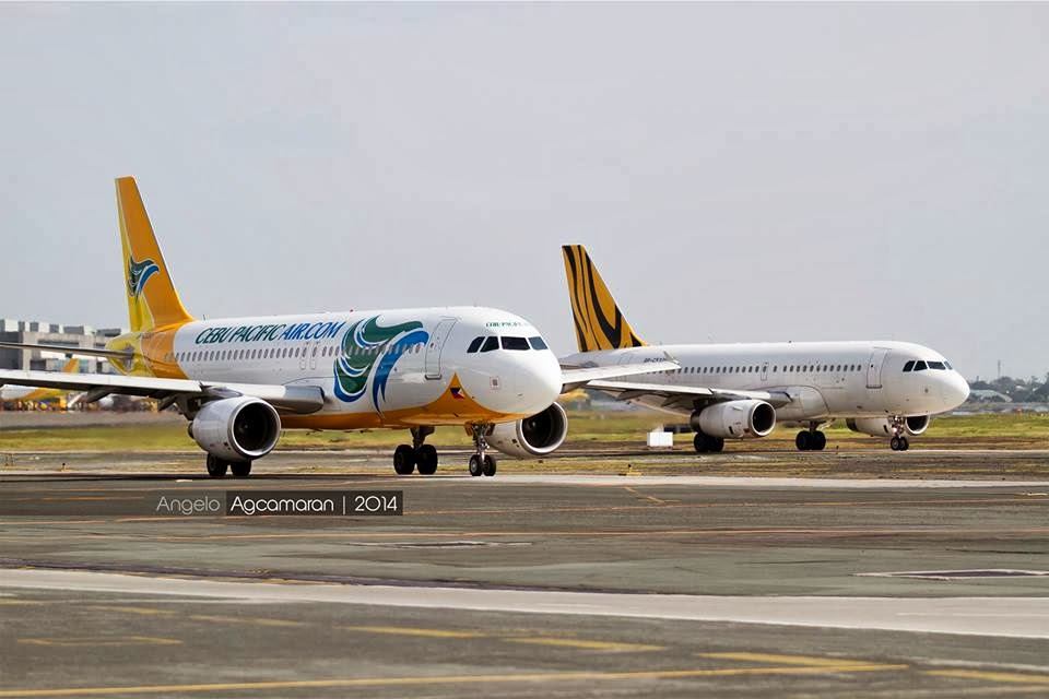 cebu pacific tigerair