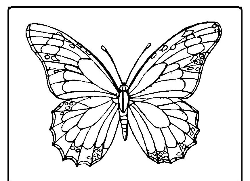 b is for butterfly coloring page - interactive magazine zoo animal butterfly coloring pages