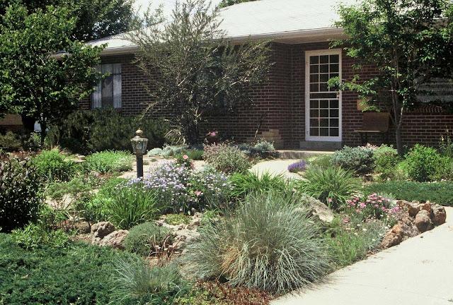 Backyard Designs No Grass : the art garden Garden Designers Roundtable Lawn Alternatives