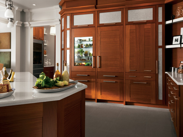 Integrated Kitchen Appliances Modern Furniture Luxury Kitchen Storage Solutions Ideas 2012 From