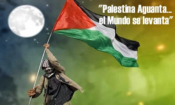 Album Fotos Gaza