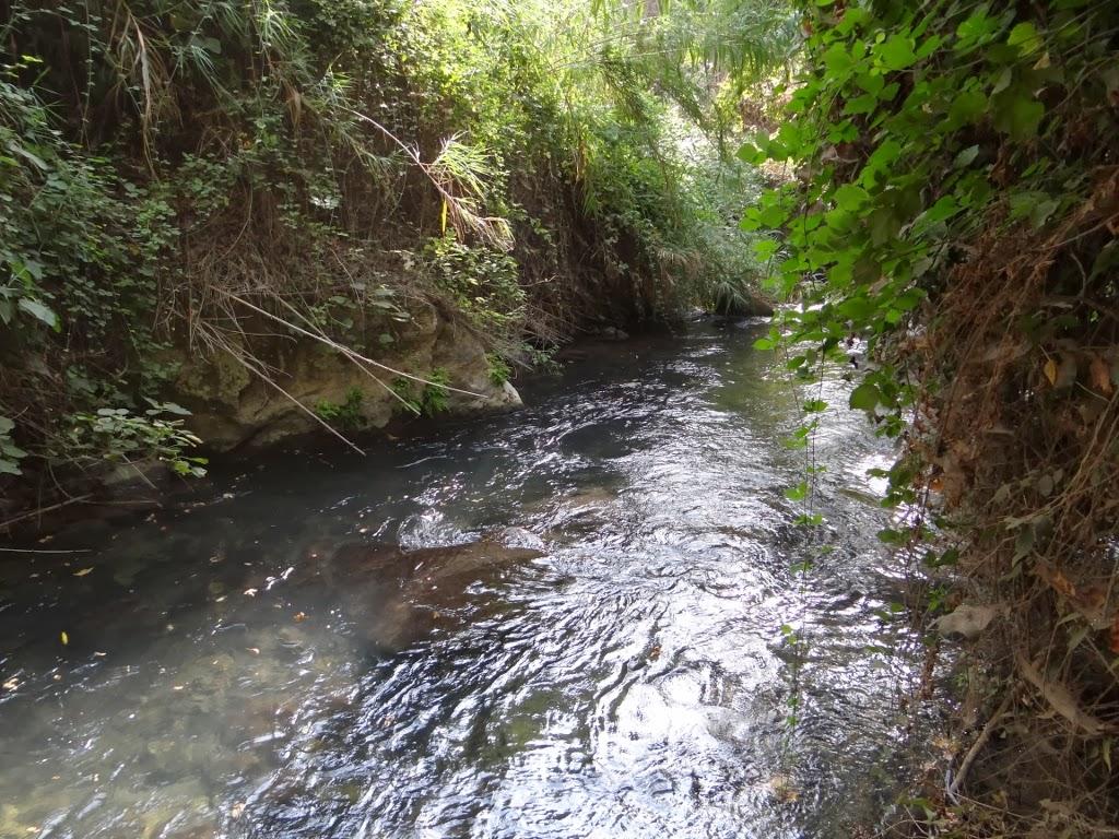 Rezerwat Przyrody Banias - Izrael