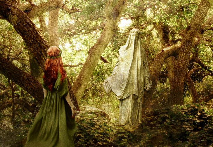 La esperanza en el bosque incierto