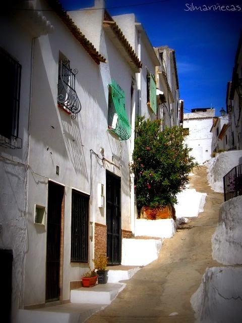 Oliva - Valencia