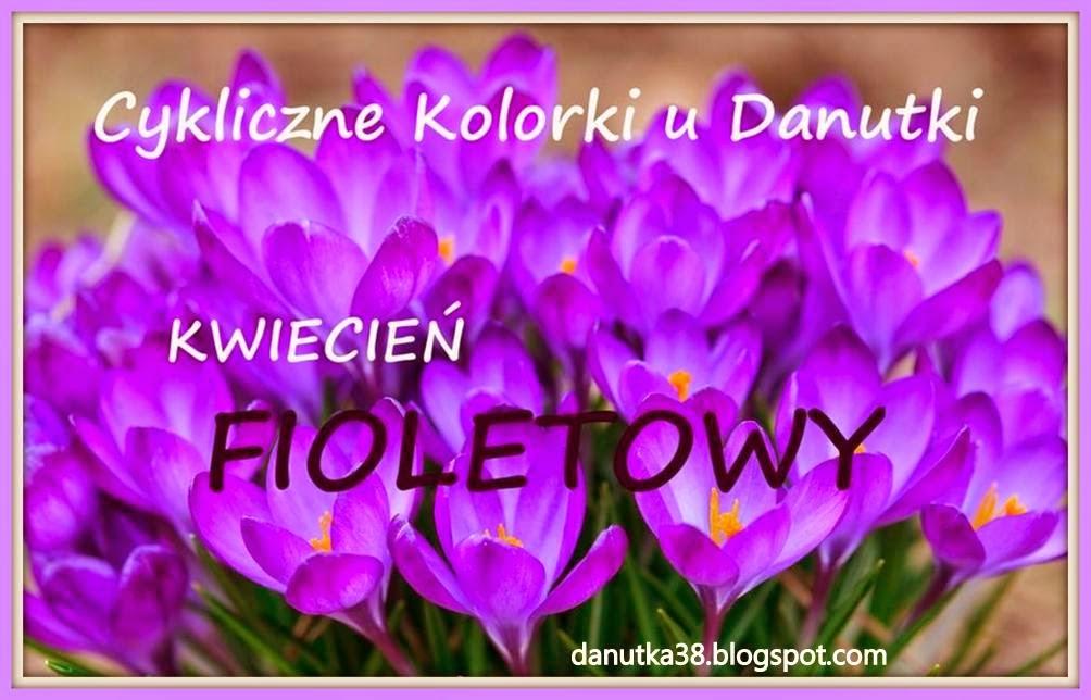 Fiolet u Danuty