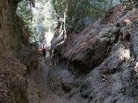 Pasos estrets entre roques granítiques en el corriol a Sant Martí de Mata
