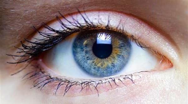 أفضل الأطعمة الضرورية لقوة البصر
