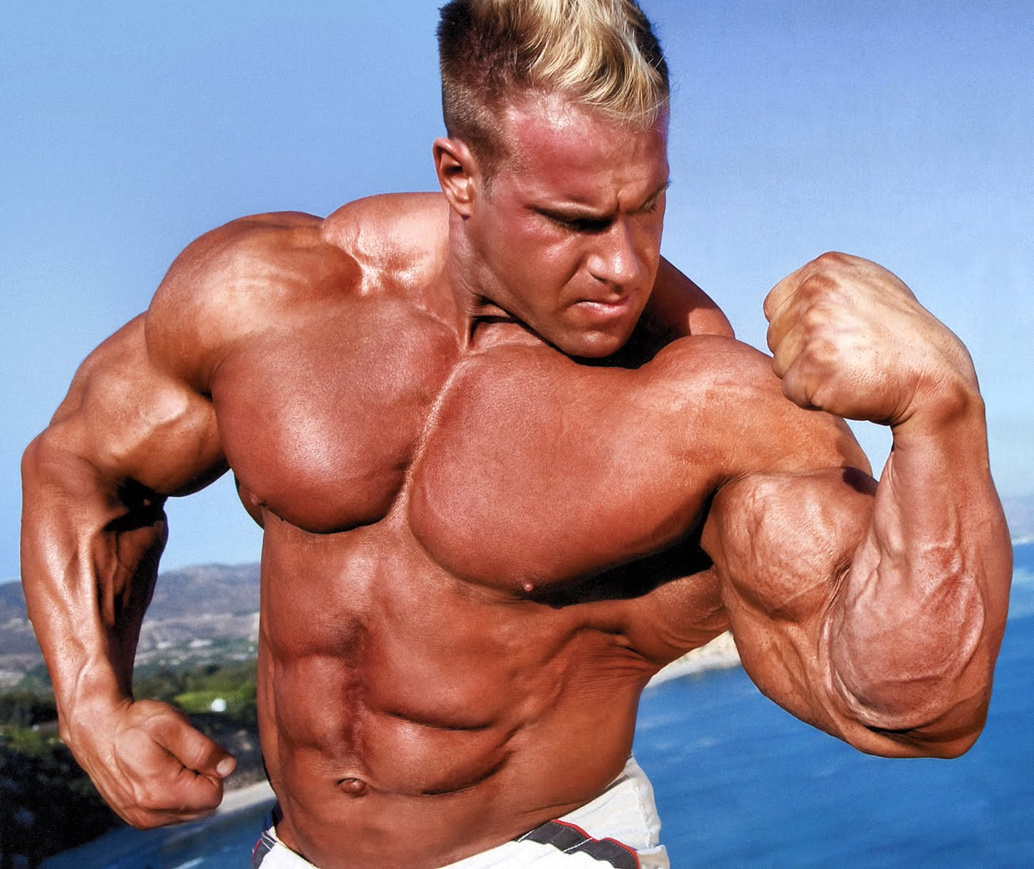 Cinema Photos And Wallpapers: jay cutler bodybuilder, jay ...