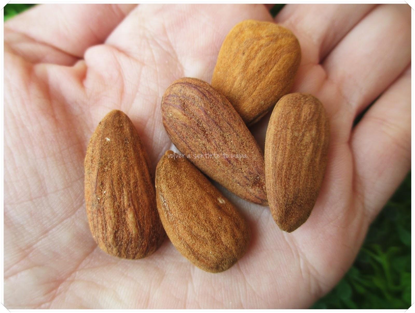 Propiedades y Beneficios de las Almendras