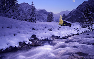 Winter Nature HD Wallpaper