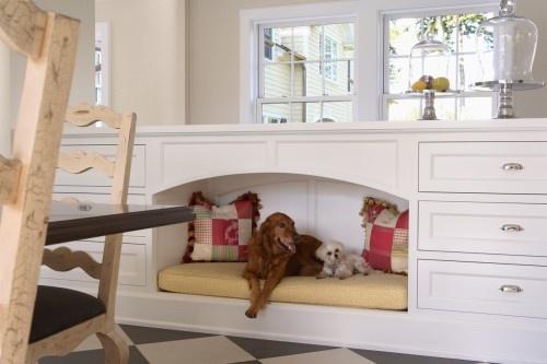 Šuns guolis gali būti Jūsų namų bendro interjero dalimi