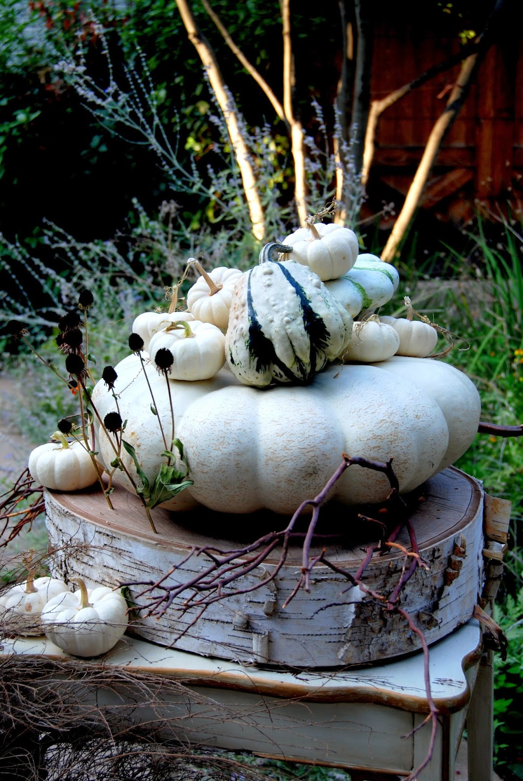 Ghostly White Pumpkins 2