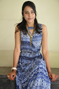 Khenisha Chandran at Jaganatakam press meet-thumbnail-3