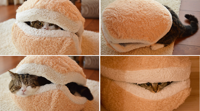 Esponjoso Escondite del Gato alias hamburguesa de gato gigante