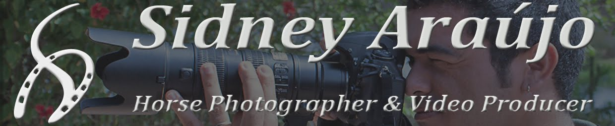 Sidney Araújo - Horse Photographer & Video Producer