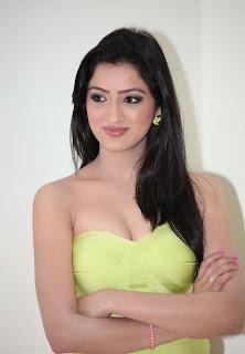 Richa Panai  Stills At Cine Maa Mahila Ads 2013 84.jpg