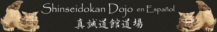 Shinseidokan Dojo en Español
